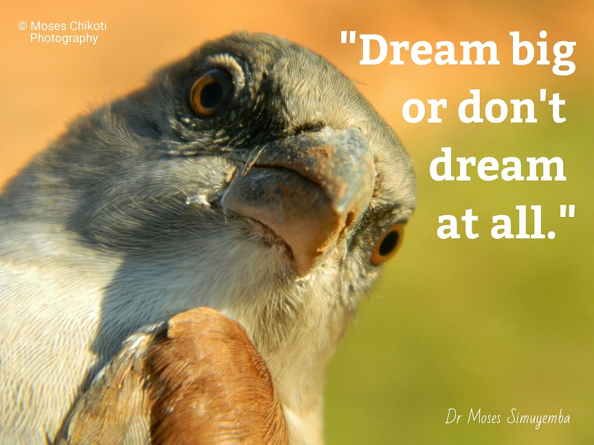 quotes about dreams, dream quotes, dr moses simuyemba, motivation for dreamers
