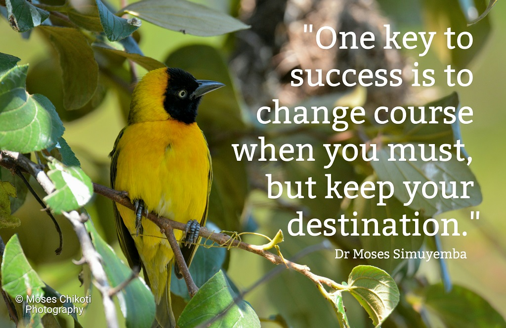 quotes about success, success quotes, Dr Moses Simuyemba, Motivation For Dreamers