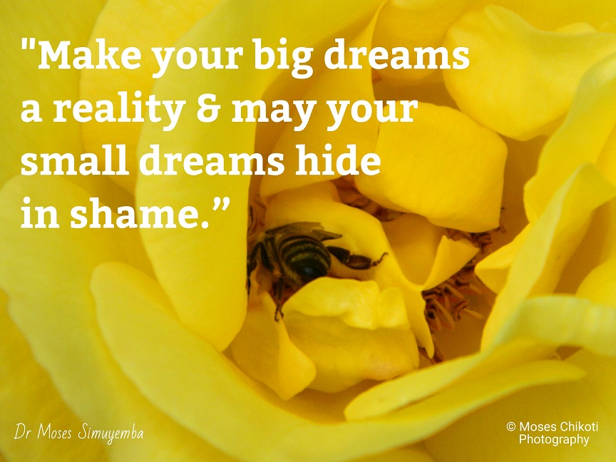 music quotes, dream quotes, quotes about dreams, dr moses simuyemba, motivation for dreamers