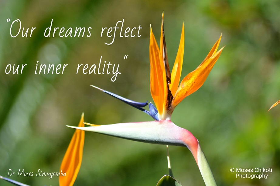 dreams quotations, dream quotes, dr moses simuyemba, motivation for dreamers