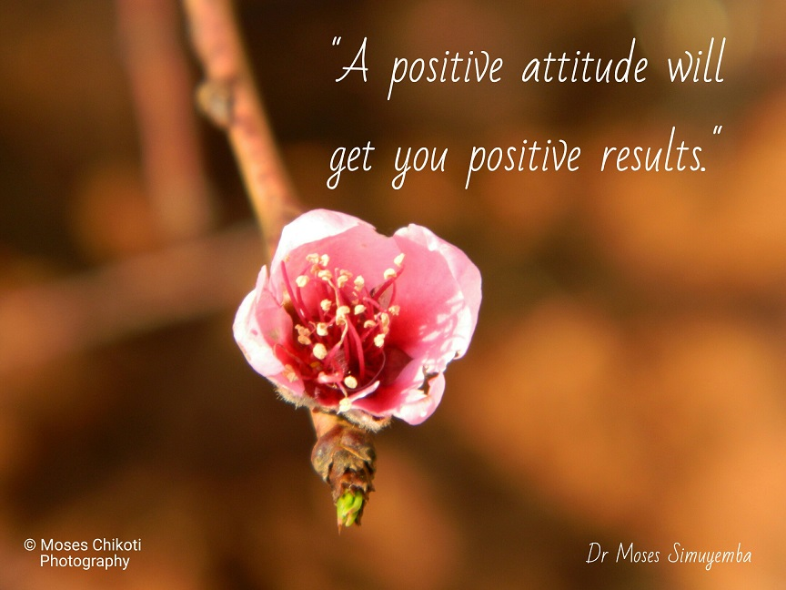 positive thinking quotes, dr moses simuyemba, motivation for dreamers