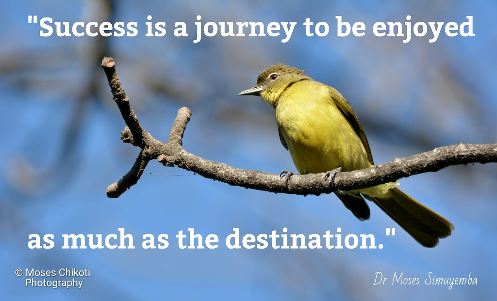 quotations on success, quotes about success, success quotes, quotes on success, success quotations,Dr Moses Simuyemba, Motivation For Dreamers