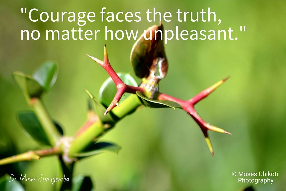 courage quotes, quotes on courage, motivation for dreamers, dr moses simuyemba