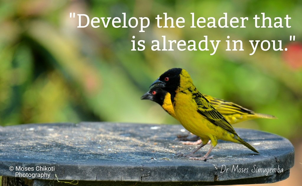 Leadership quotes, Famous leadership quotes, Dr Moses Simuyemba, Motivation For Dreamers