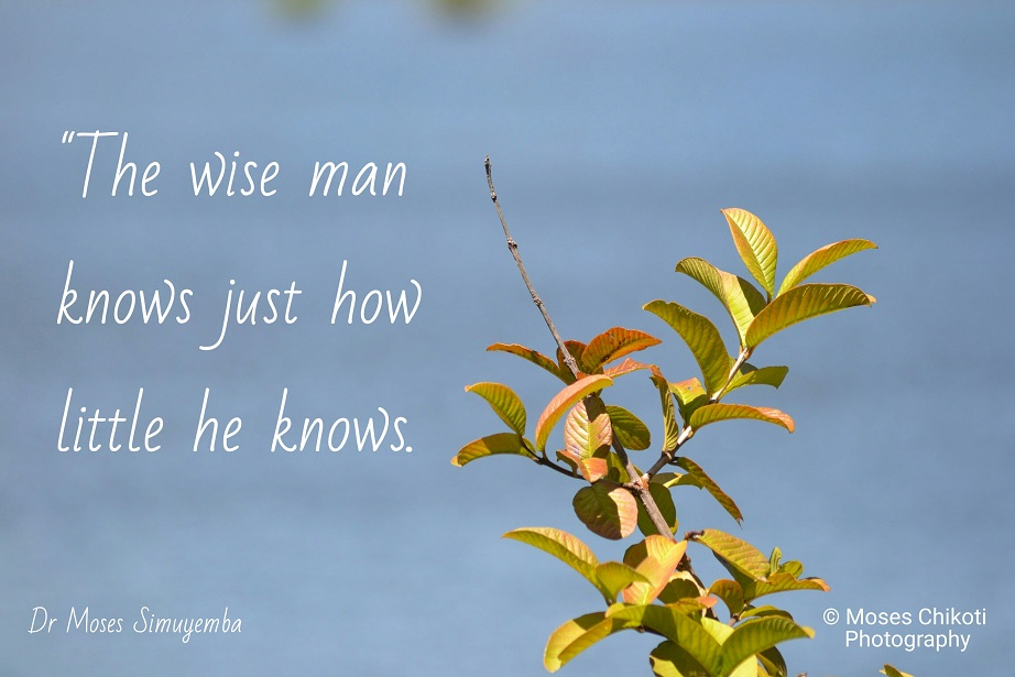 quotes about wisdom, wisdom quotes, dr moses simuyemba, motivation for dreamers